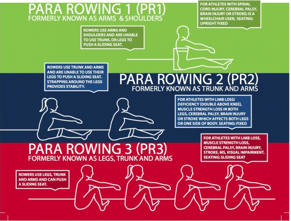 visual of the para rowing classifications